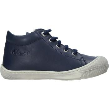 Cipők Gyerek Rövid szárú edzőcipők Naturino 2012889 16 Kék