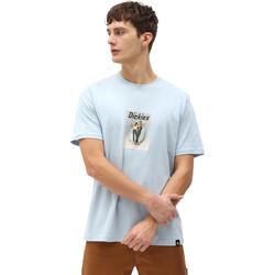 Ruhák Férfi Rövid ujjú pólók Dickies DK0A4X9IB551 Kék