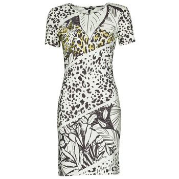 Ruhák Női Rövid ruhák Desigual WILD Sokszínű