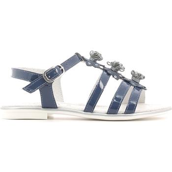 Cipők Lány Szandálok / Saruk NeroGiardini P631370F Kék