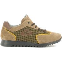 Cipők Gyerek Rövid szárú edzőcipők Alberto Guardiani GK22343G Bézs