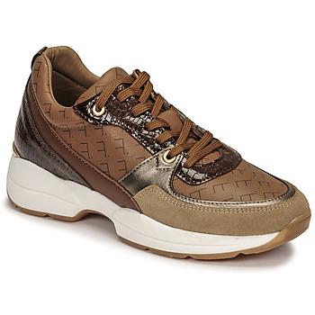 Cipők Női Rövid szárú edzőcipők Fericelli PIRYNA Bézs