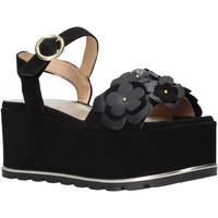 Cipők Női Szandálok / Saruk Docksteps DSE104973 Fekete