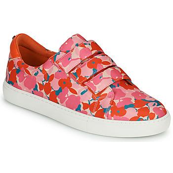 Cipők Női Rövid szárú edzőcipők Cosmo Paris HAJIA Rózsaszín / Virág