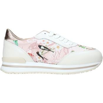 Cipők Női Rövid szárú edzőcipők Alviero Martini 9851 622A Fehér