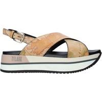 Cipők Női Szandálok / Saruk Alviero Martini E109 8391 Barna