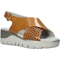 Cipők Női Szandálok / Saruk CallagHan 26508 Barna