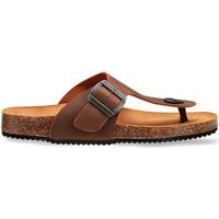 Cipők Férfi Szandálok / Saruk Docksteps DSM228401 Barna