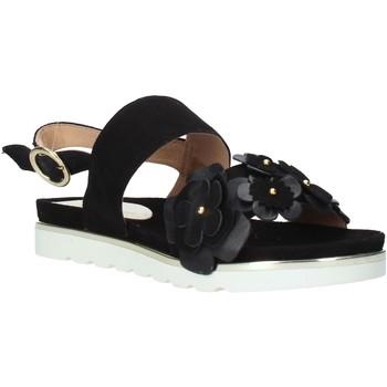 Cipők Női Szandálok / Saruk Docksteps DSE104965 Fekete