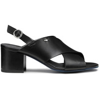 Cipők Női Szandálok / Saruk Alberto Guardiani AGW003405 Fekete