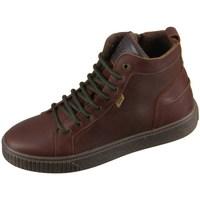 Cipők Gyerek Magas szárú edzőcipők Bisgaard 618062201322 Barna
