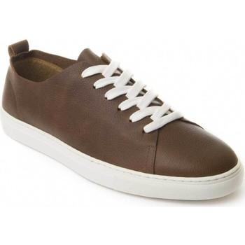 Cipők Férfi Oxford cipők Montevita 71857 BROWN