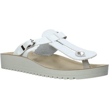 Cipők Női Lábujjközös papucsok Valleverde 37352 Fehér