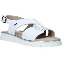Cipők Női Szandálok / Saruk Valleverde 32120 Fehér