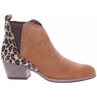 Cipők Női Bokacsizmák Marco Tozzi 222505633441