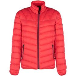 Ruhák Férfi Steppelt kabátok Napapijri  Piros