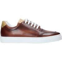 Cipők Férfi Rövid szárú edzőcipők Alviero Martini P177 578A Barna