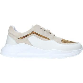 Cipők Férfi Rövid szárú edzőcipők Alviero Martini P060 578I Fehér