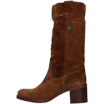 Cipők Női Városi csizmák Dakota Boots C1 BROWN