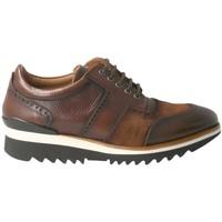 Cipők Férfi Rövid szárú edzőcipők Calce  Marrón