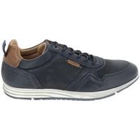 Cipők Rövid szárú edzőcipők Bullboxer Sneaker 53ANACO Bleu Kék