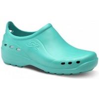 Cipők Férfi Rövid szárú edzőcipők Feliz Caminar ZAPATO SANITARIO UNISEX FLOTANTES SHOES Zöld