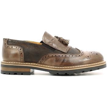 Cipők Férfi Oxford cipők Rogers 187 Barna