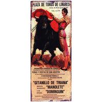 Otthon Poszterek, plakátok Signes Grimalt Bullring Fali Lemez Multicolor