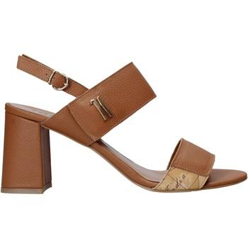 Cipők Női Szandálok / Saruk Alviero Martini E124 587A Barna