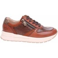 Cipők Női Rövid szárú edzőcipők Rieker N781125 Barna