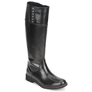 Shoes Női Városi csizmák Tosca Blu ALINE BOTTE Fekete