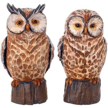 Otthon Szobrok, figurák Signes Grimalt Ábra Owl 2 Egység Marrón