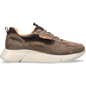 Cipők Férfi Rövid szárú edzőcipők Docksteps DSM000100 Barna