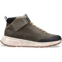 Cipők Férfi Magas szárú edzőcipők Docksteps DSM000702 Szürke