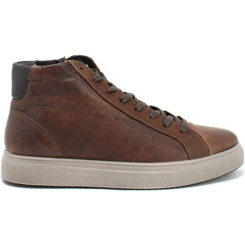 Cipők Férfi Magas szárú edzőcipők IgI&CO 8126833 Barna