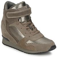 Cipők Női Magas szárú edzőcipők Ash DRUM Barna / Arany