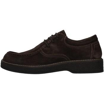 Cipők Férfi Oxford cipők IgI&CO 8113633 BROWN