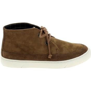 Cipők Női Oxford cipők & Bokacipők Armistice Blow Desert Camel Bézs