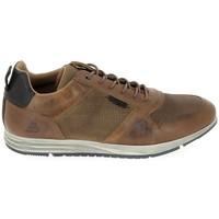 Cipők Rövid szárú edzőcipők Bullboxer 477P21153 Cognac Bézs