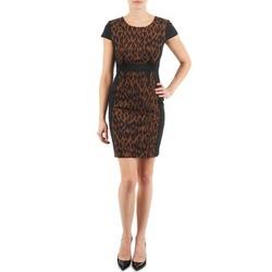 Ruhák Női Rövid ruhák Manoukian EMMA Fekete  / Leopárd