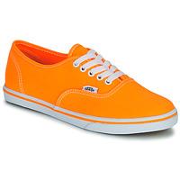 Shoes Női Rövid szárú edzőcipők Vans AUTHENTIC LO PRO Narancssárga / Pop
