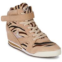 Shoes Női Magas szárú edzőcipők Ash JAZZ Zebra