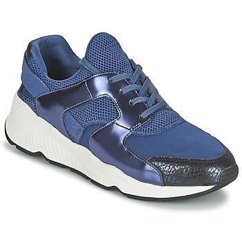 Shoes Női Rövid szárú edzőcipők Ash MATRIX Tengerész