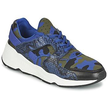 Shoes Női Rövid szárú edzőcipők Ash MATRIX Kék / Álcáz