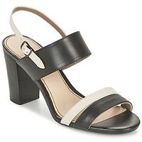 Shoes Női Szandálok / Saruk Hush puppies MOLLY MALIA Fekete