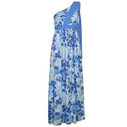 Ruhák Női Hosszú ruhák Manoukian 613356 Kék
