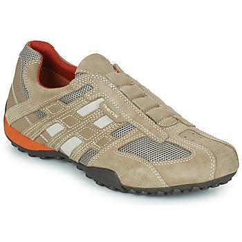 Cipők Férfi Rövid szárú edzőcipők Geox SNAKE Bézs