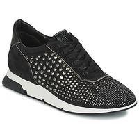 Cipők Női Rövid szárú edzőcipők Luciano Barachini SOHO Fekete