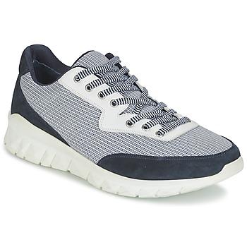Cipők Férfi Rövid szárú edzőcipők Paul & Joe REPPER Tengerész