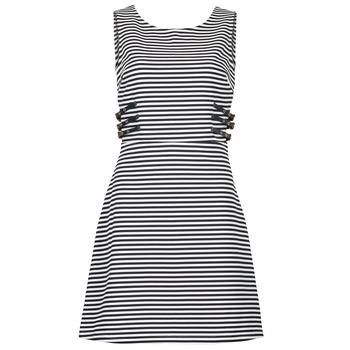 material Női Rövid ruhák Morgan RMARI Tengerész / Ekrü